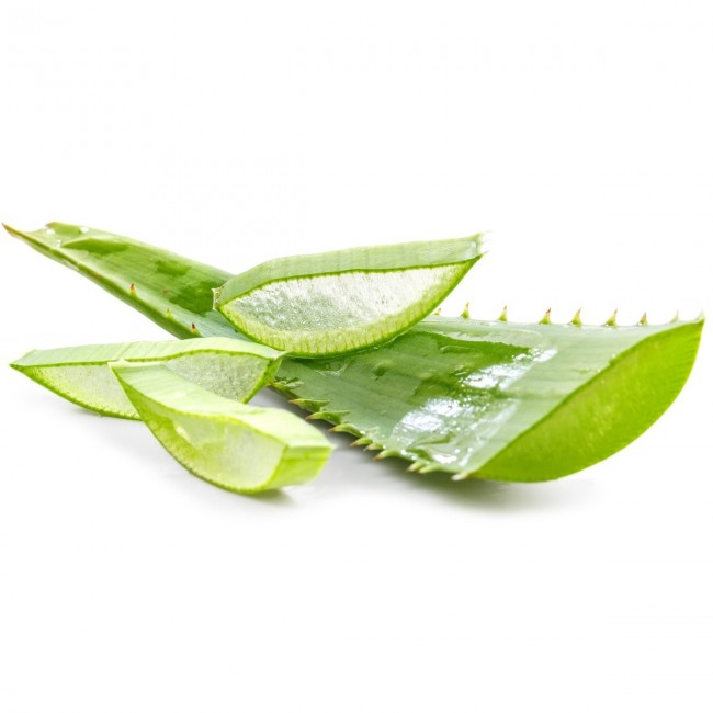Aloe Vera Jel Aloe Vera Yaprağı Hammadde 1. Kalite 4 Yaş Üzeri 1.000 GR